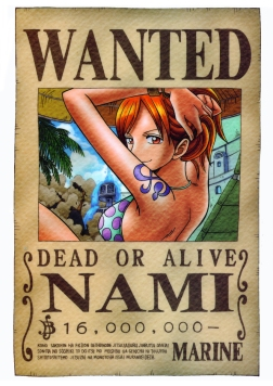 nami-wanted (2)