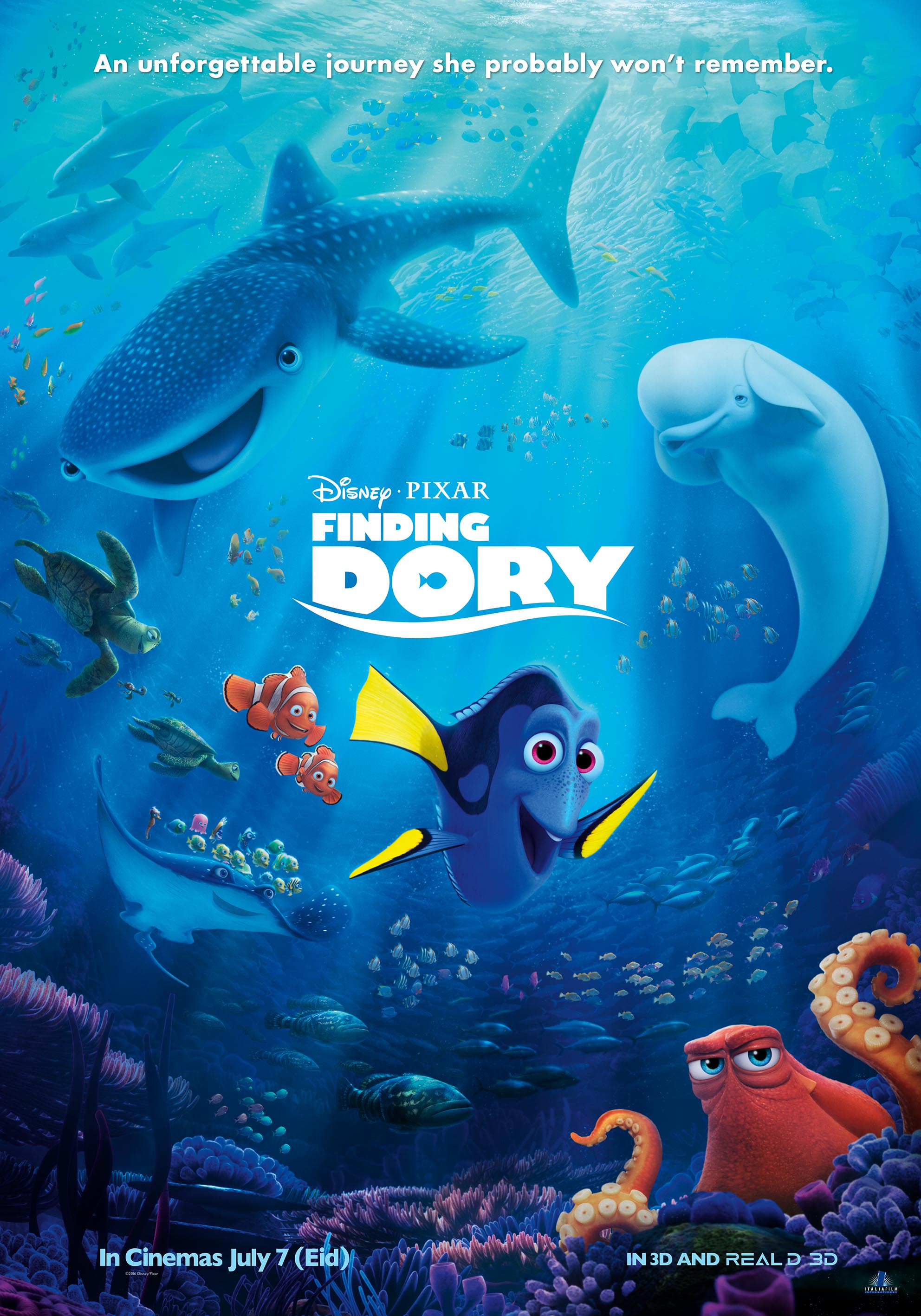 Finding Dory A Surprising Find Merlins Musings